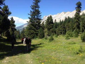 Stage jeune et yoga dans les hautes alpes