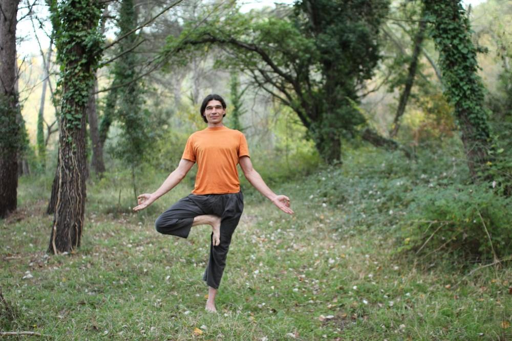 stages de yoga en provence