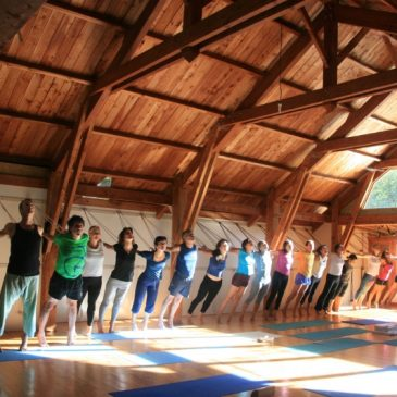 Ecole de Yoga Iyengar à Marseille